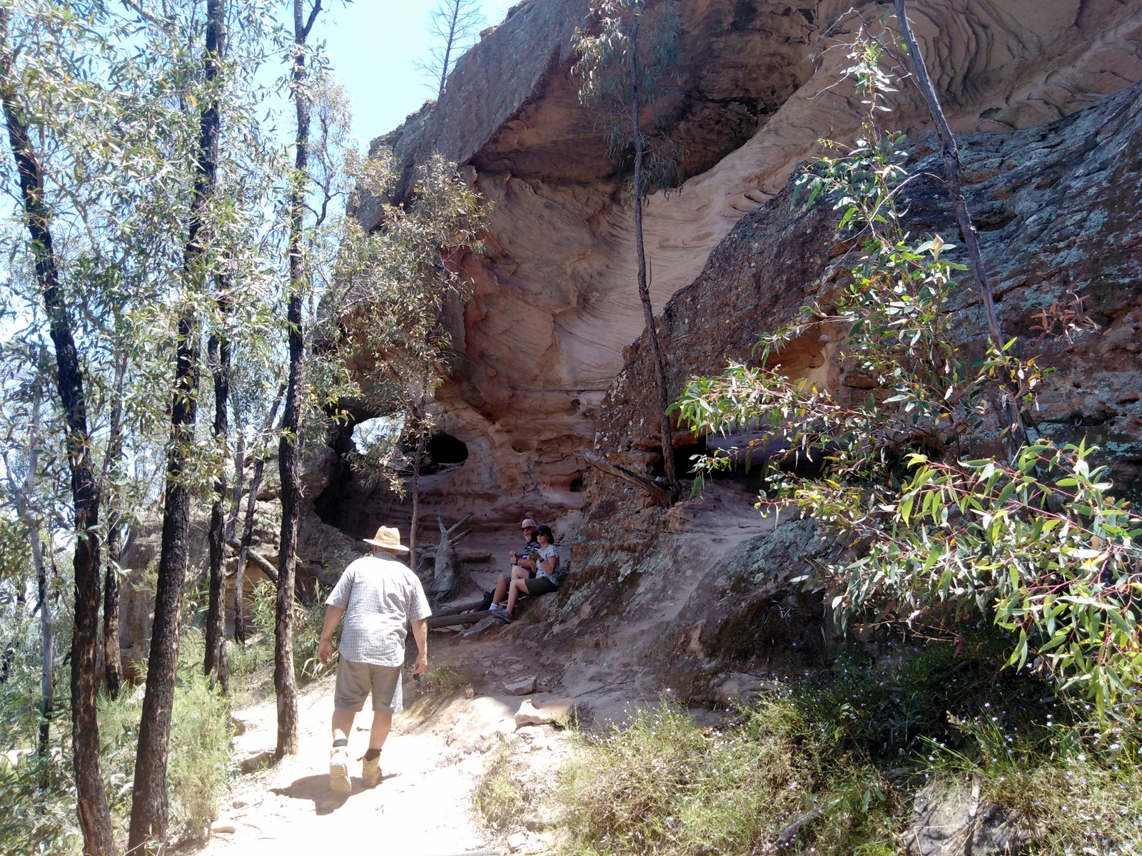 Sandstone Caves in Pilliga Forest