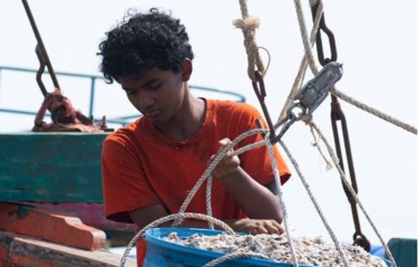 Film exposes slavery in SE Asian fishing industry