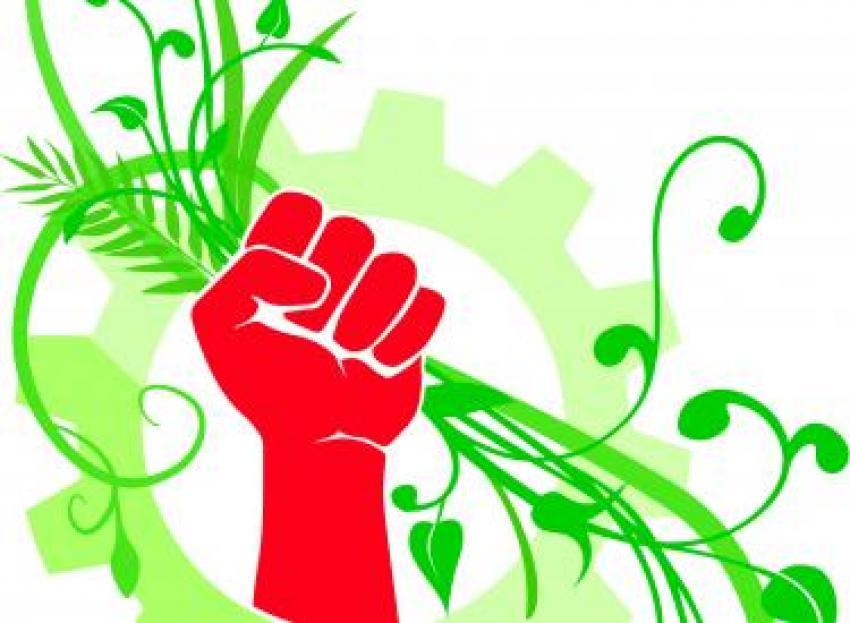 Seven new books for an ecosocialist bookshelf