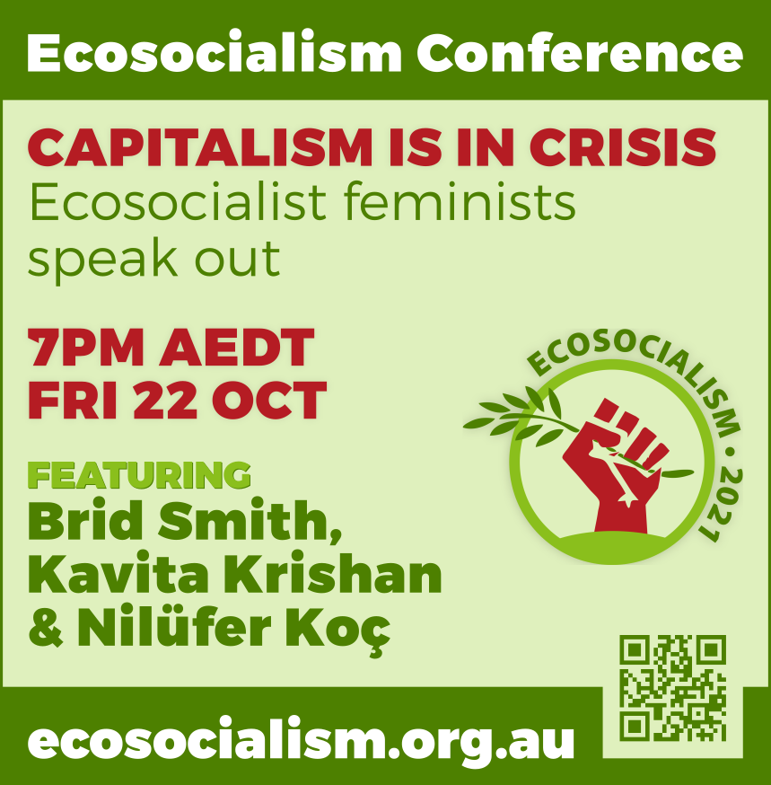 Capitalism is in crisis, ecosocialism conference panel