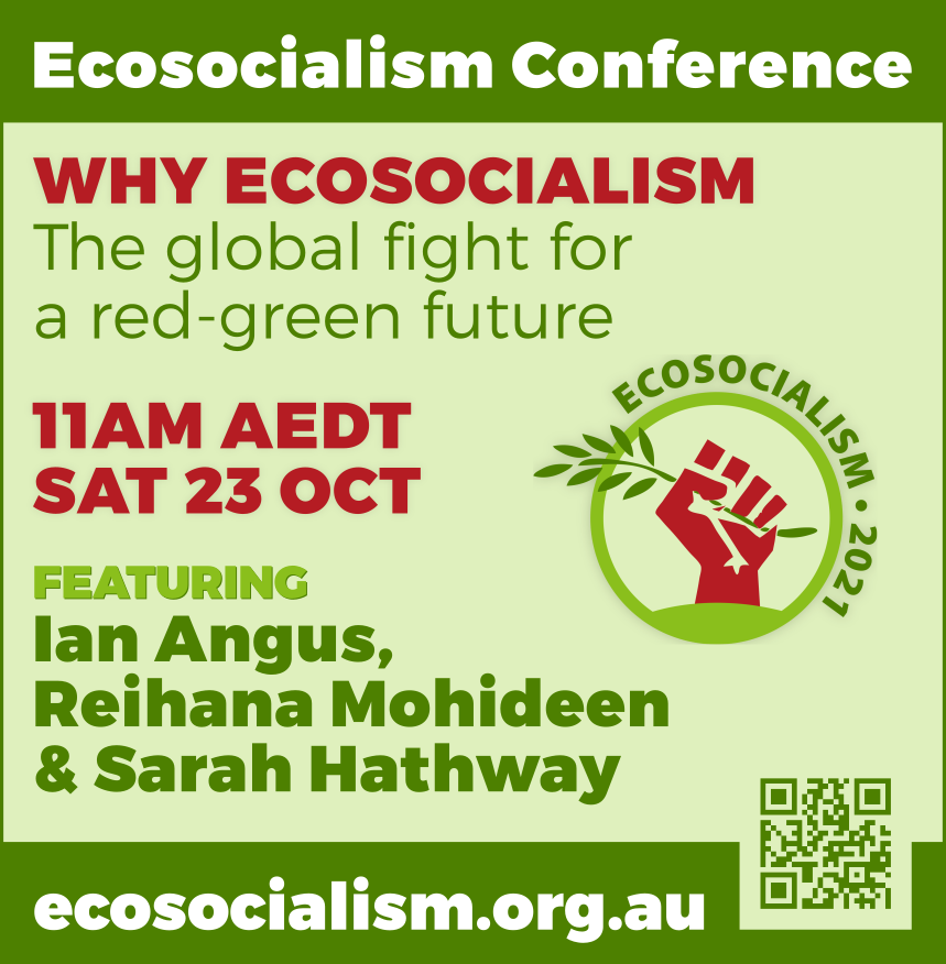Why ecosocialism panel, Ecosocialism conference