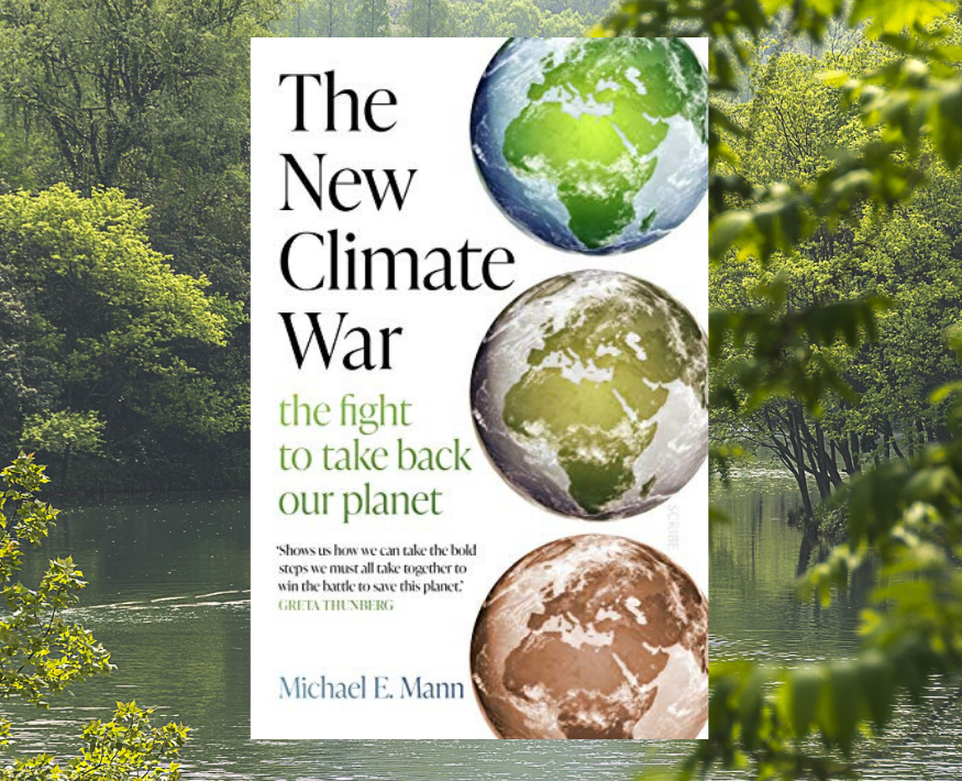 Friendly fire in the war on climate change