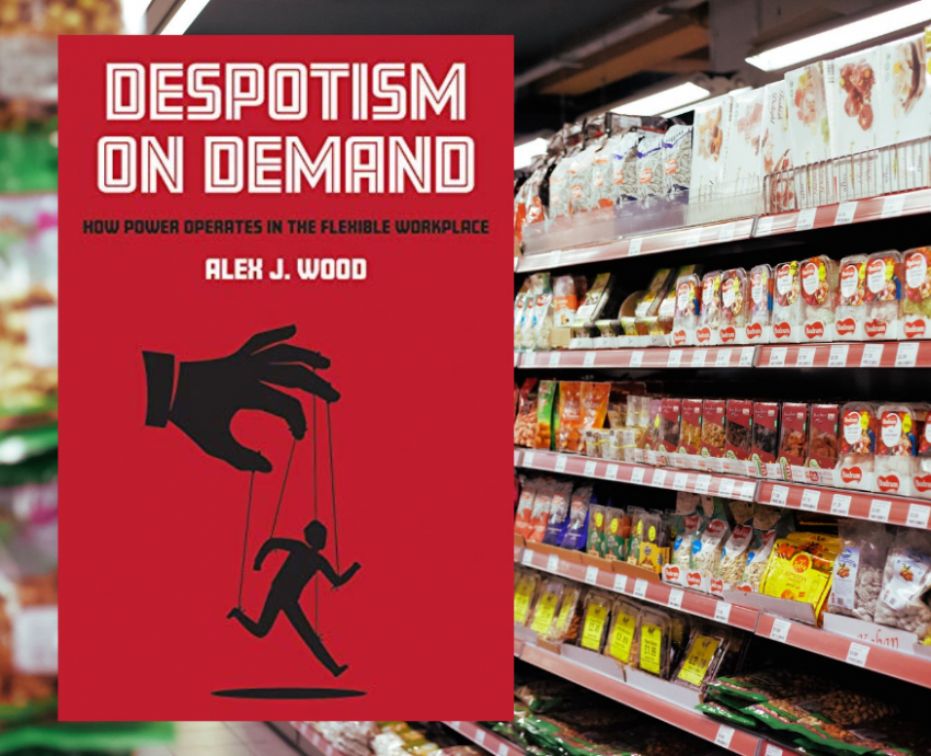 despotism on demand book cover