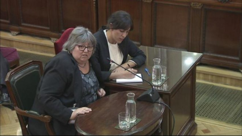 New Zealand polling expert Helen Catt, an observer on October 1, gives evidence