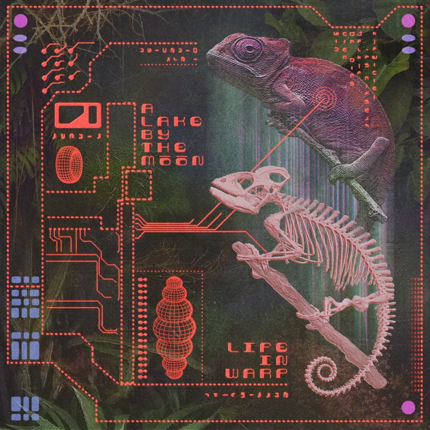 A LAKE BY THE MOON - LIFE IN WARP album artwork