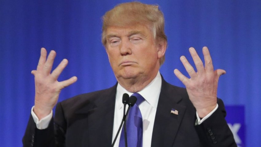 An orange baboon obsessed with the size of his hands.