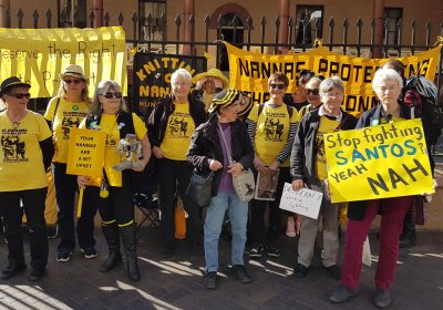 Illawarra Knitting Nannas Against Greed at a protest outside NSW parliament.
