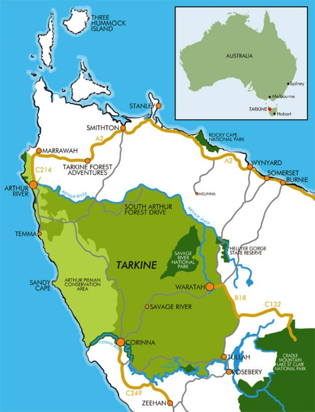 Tarkine rainforest world heritage listing now green left weekly tarkine rainforest world heritage listing now gumiabroncs Image collections